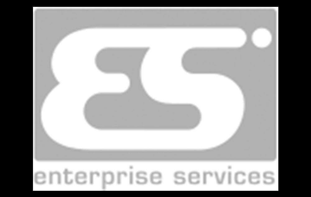 Enterprise Services Logo