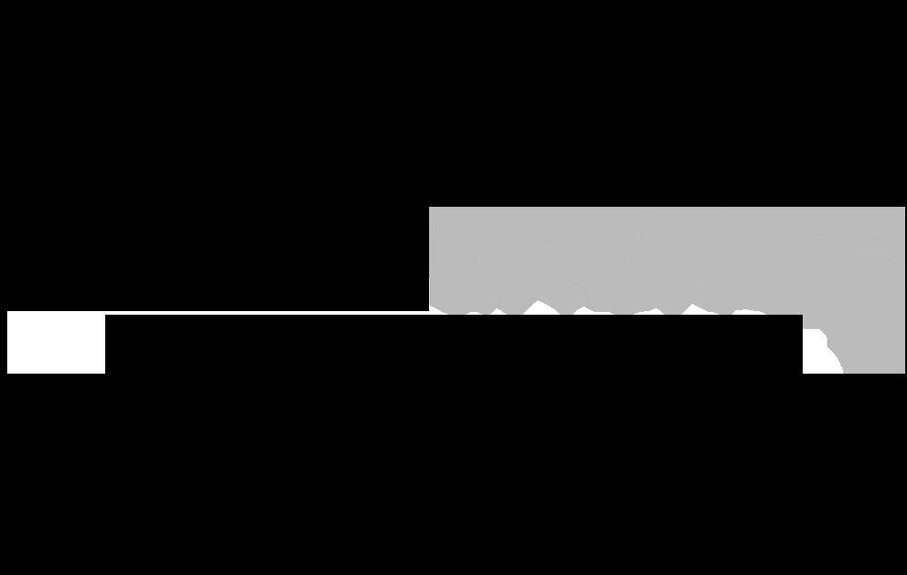 Signal Energy Logo-1