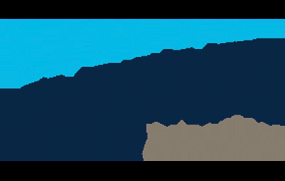Viva Energy Logo-1